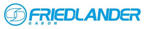logo-friedlander